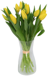 bukiet tulipanów na święta z dostawą