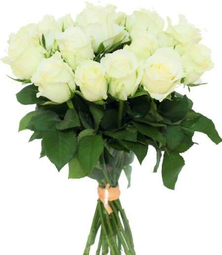 bukiet białe róże , poczta z kwiatami kwiaciarnia online