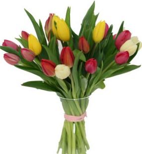 bukiet tulipanów na święta