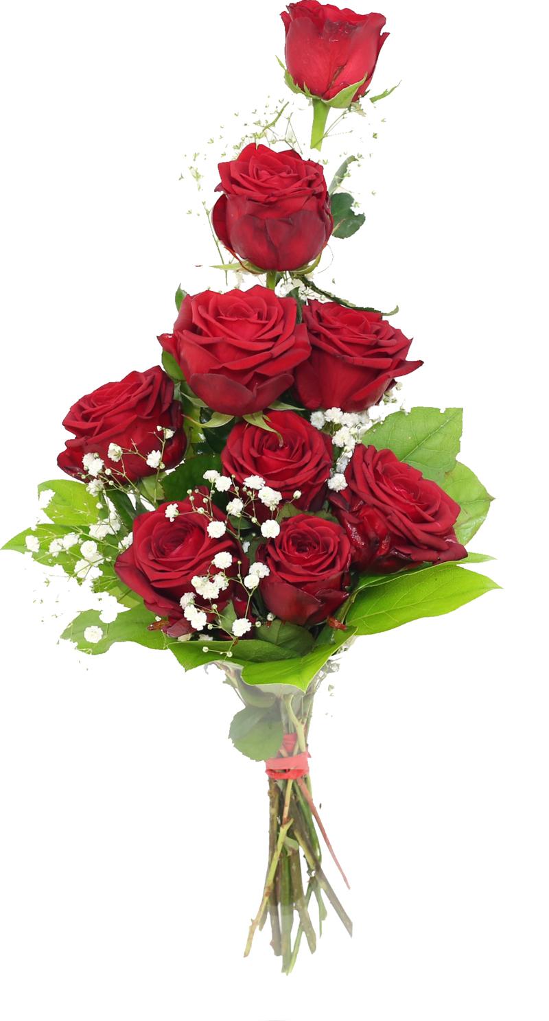 Roze Marzanny Kwiaty Portal