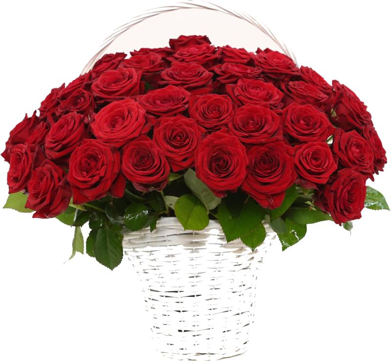 Roze W Koszu Od 10 Szt Kwiaty Portal