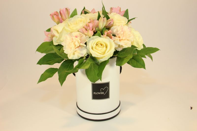 flowerbox hani