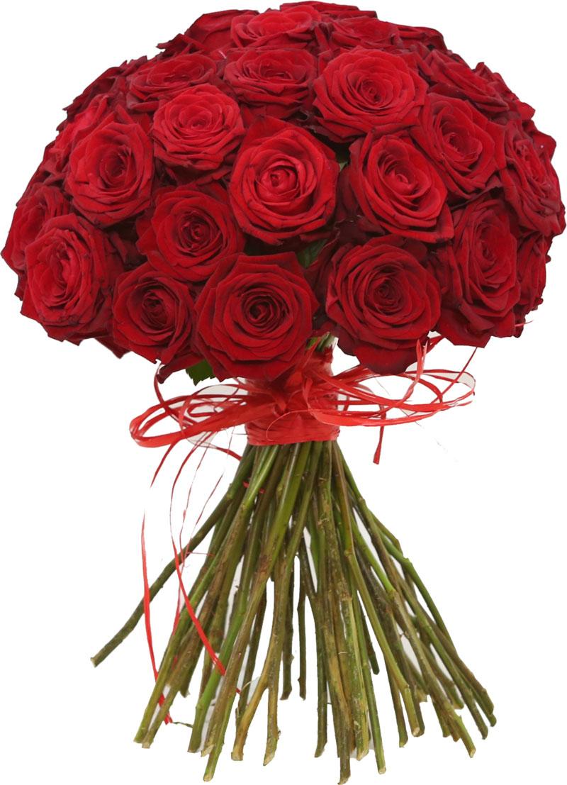 Kupuj w kwiaciarni online w Lublinie