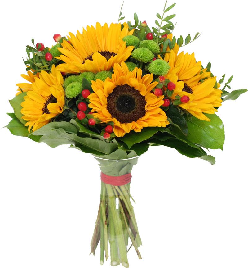 Kwiaciarnia internetowa Gliwice bukiet słoneczniki z dostawą