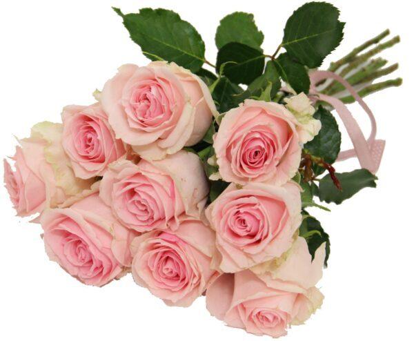 bukiet 9 róż, różowych kwiaciarnia internetowa Toruń