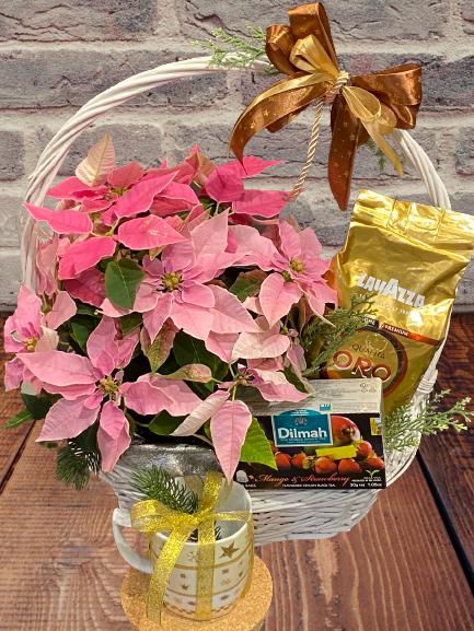 kwiaty na święta Bożego Narodzenia, kosz prezentowy na święta Bożego Narodzenia z Gwiazdą Betlejemska Warszaw, dostawa poczta florystyczna