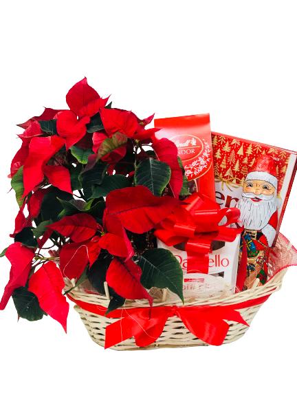 kwiaty na Święta Bożego Narodzenia, dostawa poczta florystyczna Warszawa, flower delivery to Warsaw